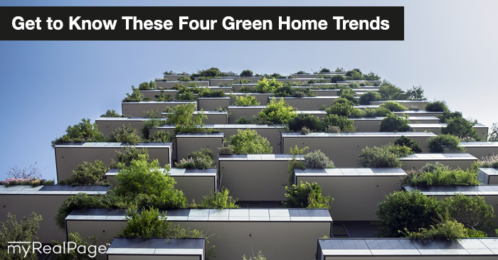 Get to Know These Four Green Home Trends